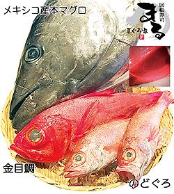 1225魚250